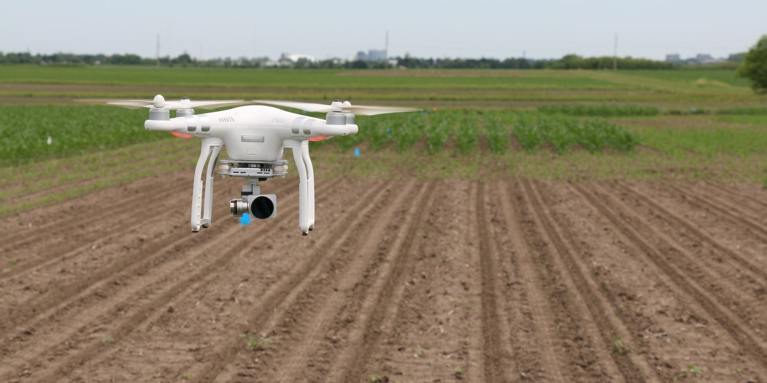drone over agricultural field