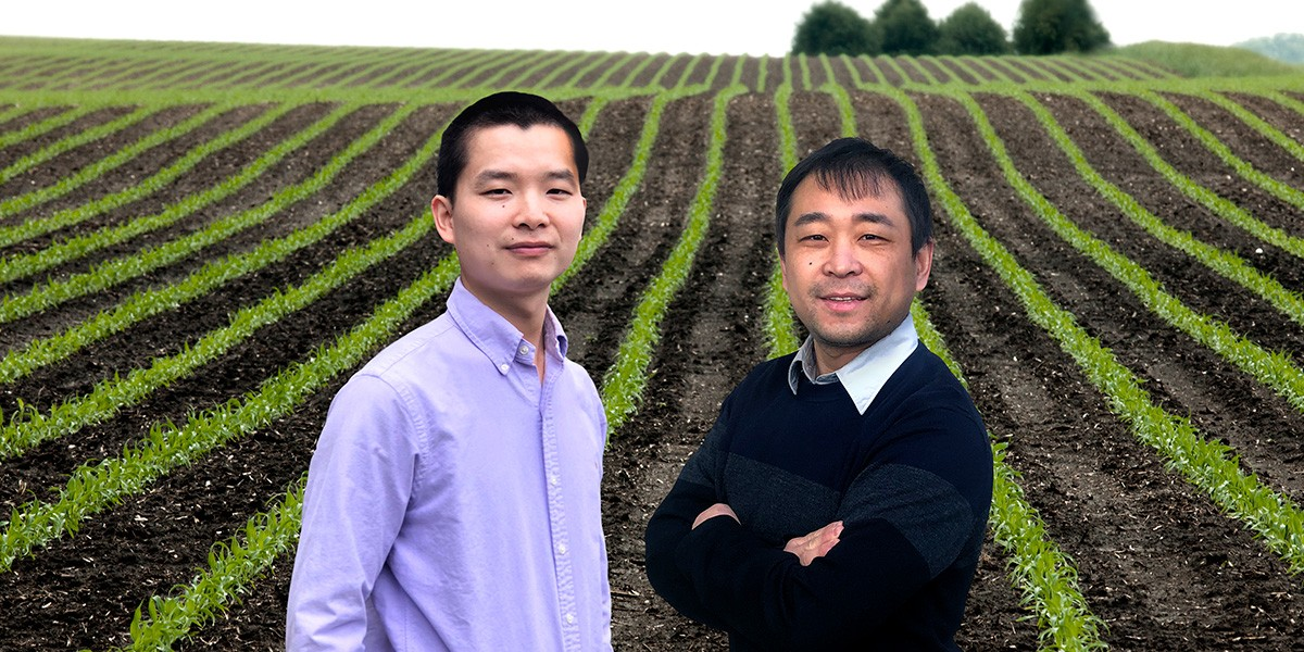 Researchers Bin Peng, left, and Kaiyu Guan led a large, multi-institutional study that calls for a better representation of plant genetics data in the models used to understand crop adaptation and food security during climate change. Photo illustration by Fred Zwicky.