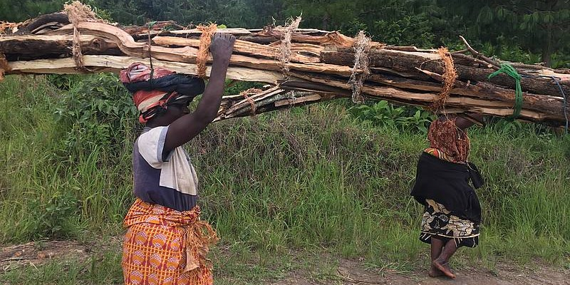 Women in Malawi carrying firewood, a basic resource in their daily lives. Photo by Jennifer Zavaleta Cheek.