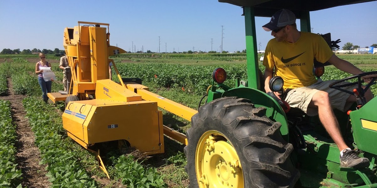 Machine harvest of edamame, lima bean, and snap bean plots in field trials near Urbana, IL.  The field trials examined an early-terminated cereal rye cover crop as a component of an integrated weed management system.