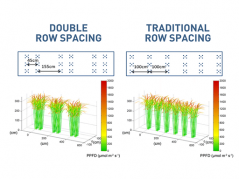 row spacing