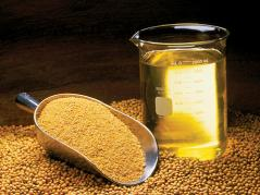 soybean products