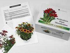 hort flash cards